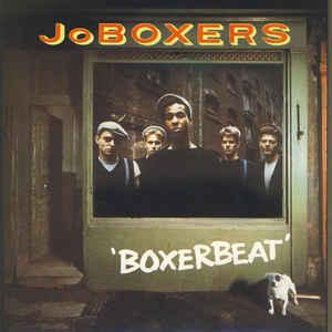 joboxers_boxerbeat.jpg